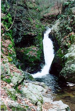 Picture of Indian Well Falls - Shelton, CT