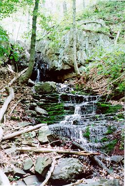 Picture of Stair Brook Falls - North Branford (Northford), CT